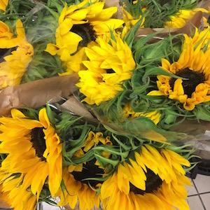 Sunflower supermarkt
