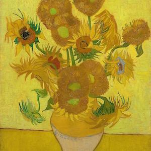 Sunflower Vincent van Gogh